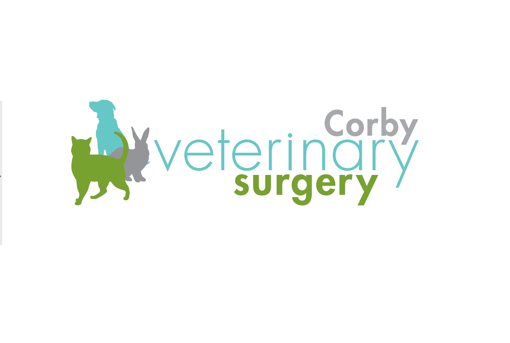 Clinical Director – Corby Veterinary Surgery