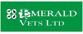 Small Animal Veterinary Surgeon in Llaneli, Wales
