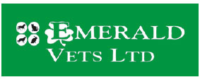 Experienced full-time Veterinary Surgeon - Llanelli, Wales