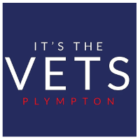 Full-time registered veterinary nurse, Plymouth