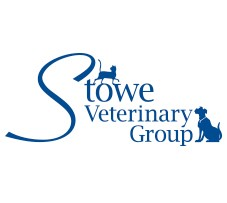 Experience Veterinary Surgeon