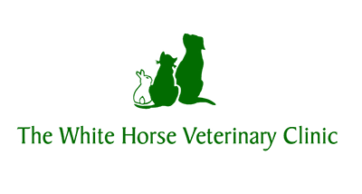 Full or Part Time Veterinary Surgeon