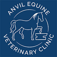 Equine Veterinary Surgeon – West Sussex